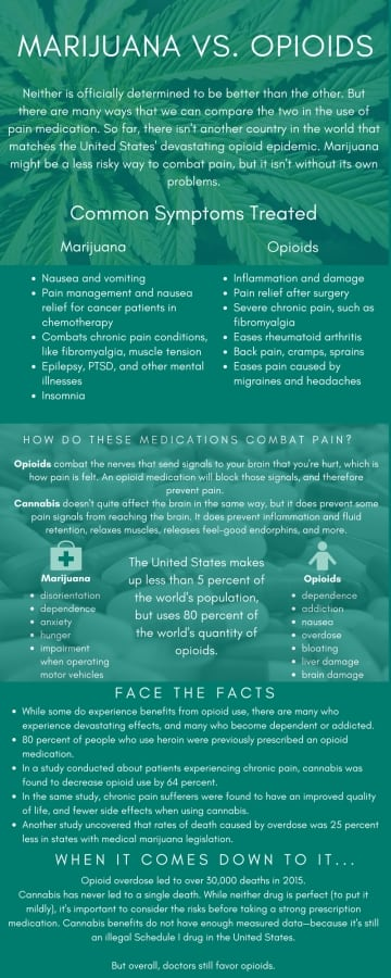 an introduction to the effects of opiates made from opium Opioid abuse and addiction treatment essay sample  one of the main effects from abusing opiates is function of the brain  introduction disorder refers to an.